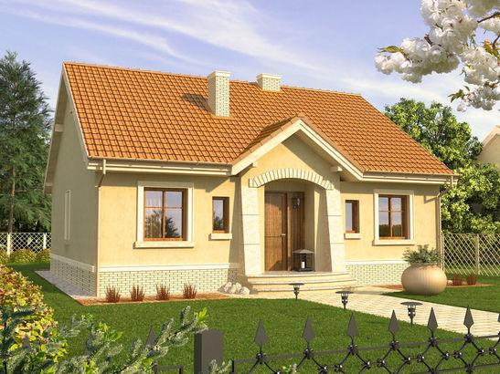 Projekt domu Jaspis P - widok 1