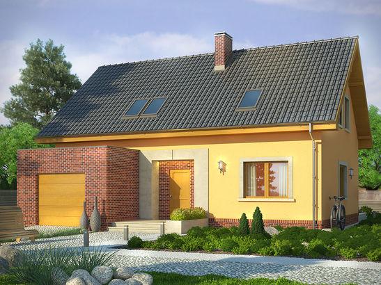 Projekt domu Opuncja - widok 1
