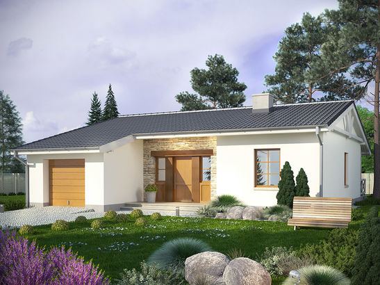 Projekt domu Olszyna - widok 2