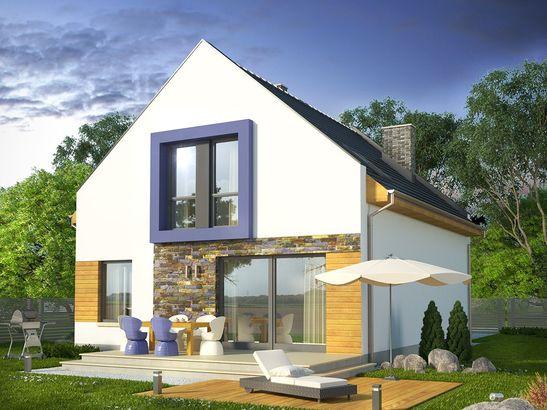 Projekt domu Pionier 2 - widok 2