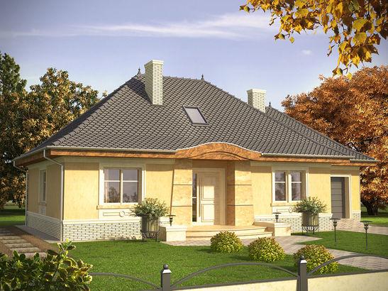 Projekt domu Patyna - widok 1