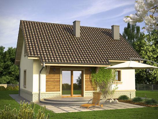 Projekt domu Adept - widok 2