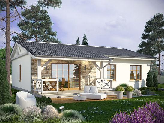 Projekt domu Olszyna - widok 1