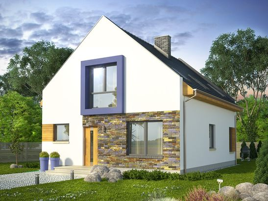 Projekt domu Pionier 2 - widok 1