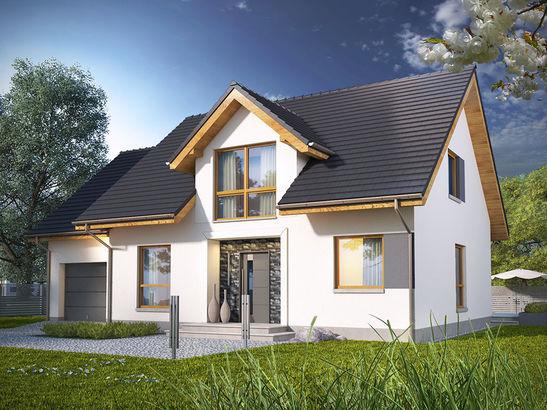 Projekt domu Miętus - widok 1