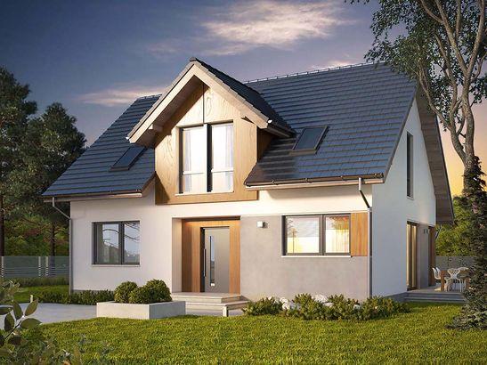 Projekt domu Fikus 2 - widok 1