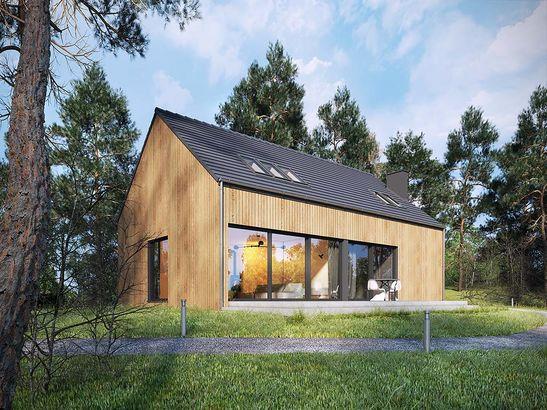 Projekt domu Studio 71 - widok 1