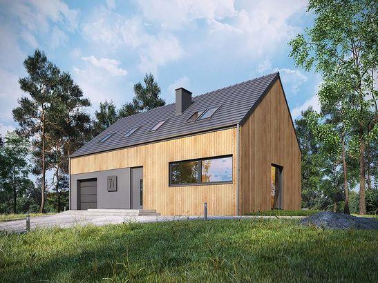 Projekt domu Studio 71 - widok 2