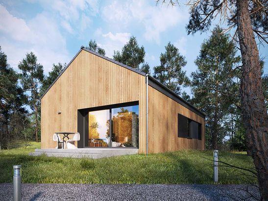 Projekt domu Studio 36 - widok 1