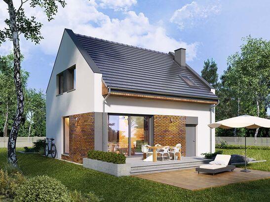 Projekt domu Bodo - widok 1