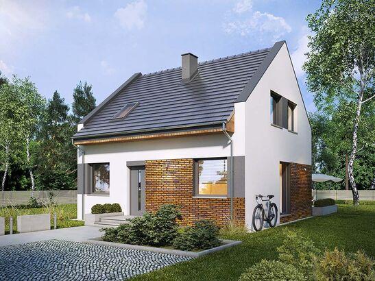 Projekt domu Bodo - widok 2
