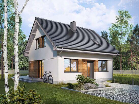 Projekt domu Fortel - widok 1