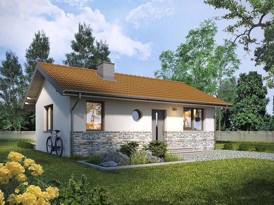 Projekt domu Jeżówka - widok 1