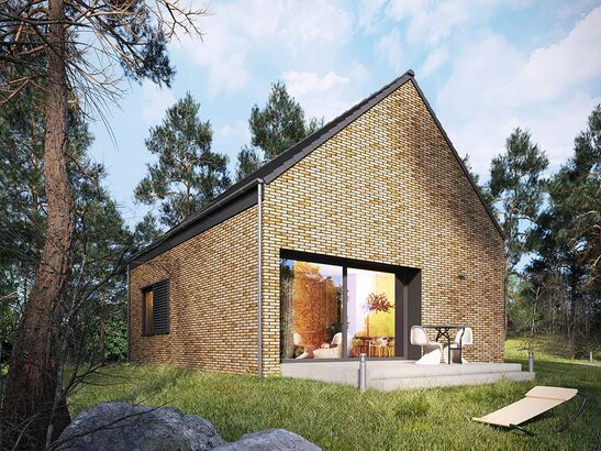 Projekt domu Studio 42 - widok 1