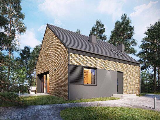 Projekt domu Studio 42 - widok 2