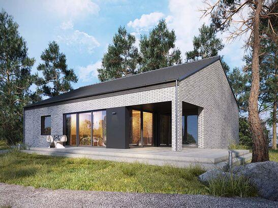 Projekt domu Studio 49 - widok 1