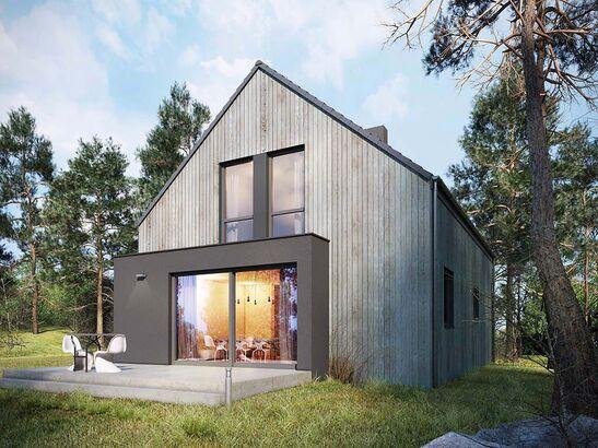 Projekt domu Studio 63 - widok 1