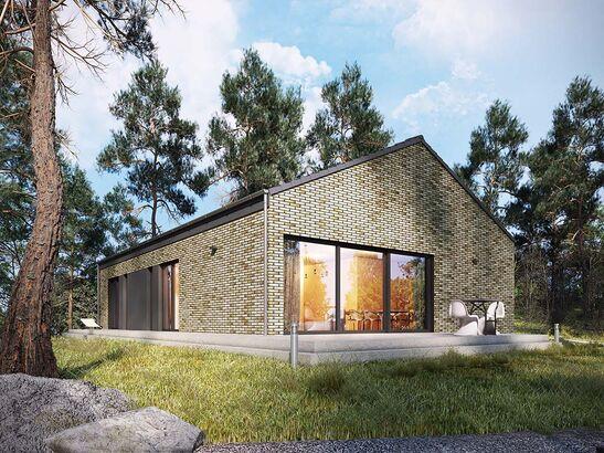 Projekt domu Studio 68 - widok 1