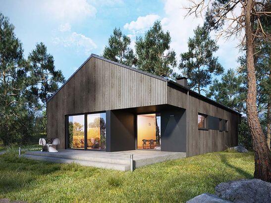 Projekt domu Studio 95 - widok 1